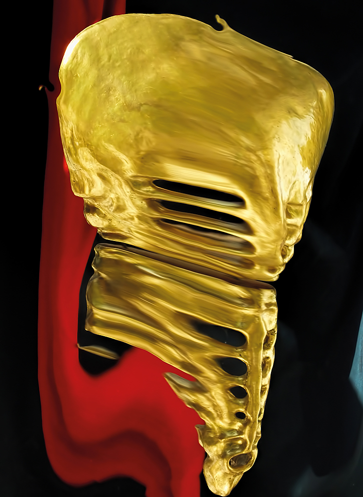 Distorted Sculptures 1